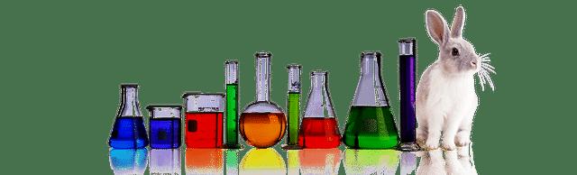 Kémia és biológia emelt érettségi felkészítő kurzusok - lvlUP